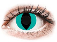 CRAZY LENS - Cat Eye Aqua - jednodniowe zerówki (2 soczewki)