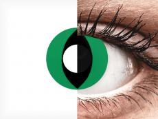 CRAZY LENS - Cat Eye Green - jednodniowe zerówki (2 soczewki)