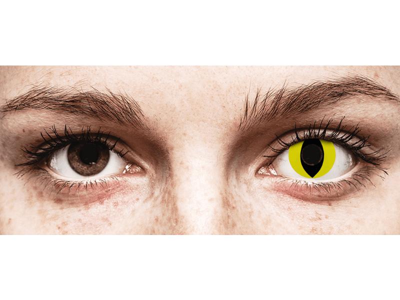 CRAZY LENS - Cat Eye Yellow - jednodniowe zerówki (2 soczewki)